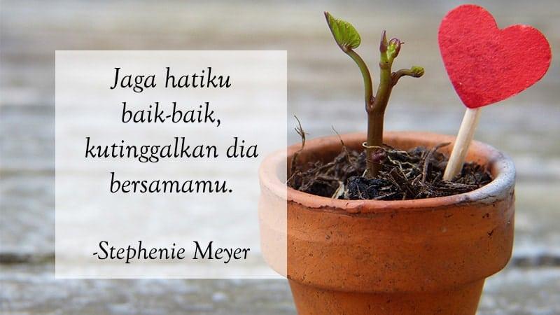 Kata Kata Cinta Bijak Romantis - Stephenie Meyer