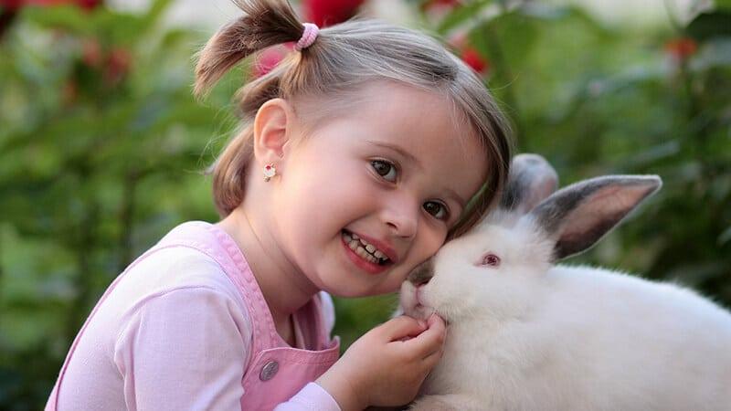 Video lucu anak anak - Anak dan kelinci