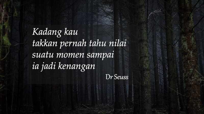Caption Instagram bijak - Kutipan Dr Seuss
