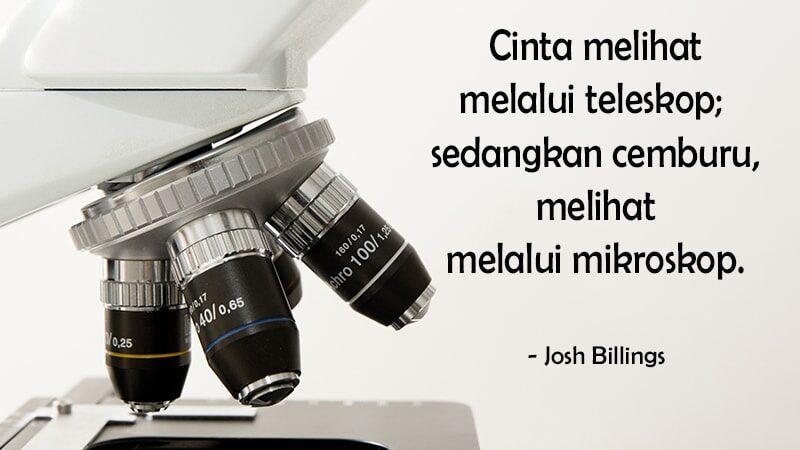 Kata kata cemburu buat pacar - Josh Billings