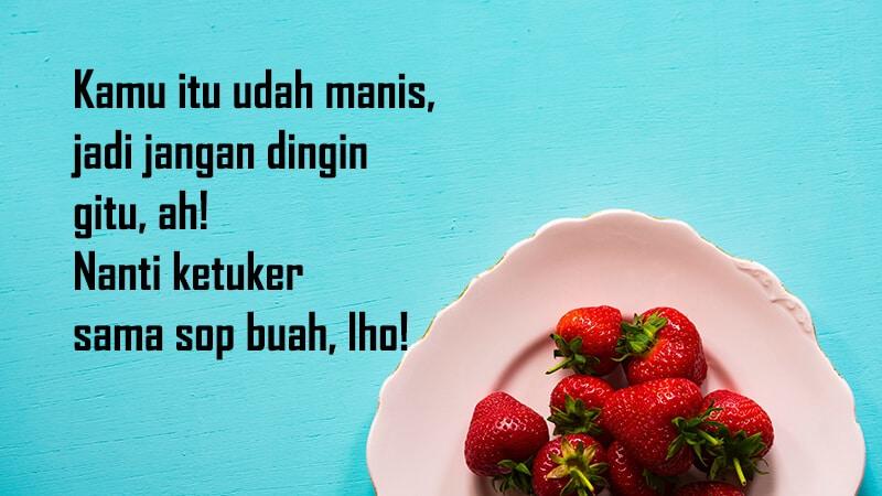 Kata kata lucu buat pacar - Kutipan sop buah