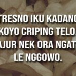 Kata Mutiara Bahasa Jawa Lucu - Keripik Singkong