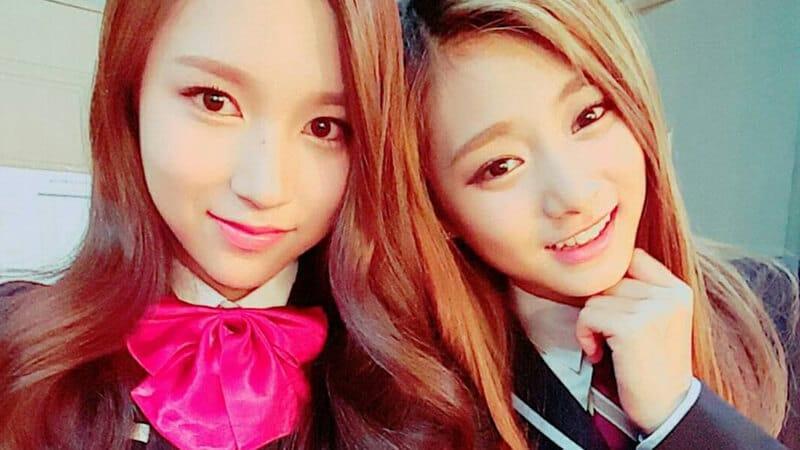 Profil TWICE - Mina & Tzuyu