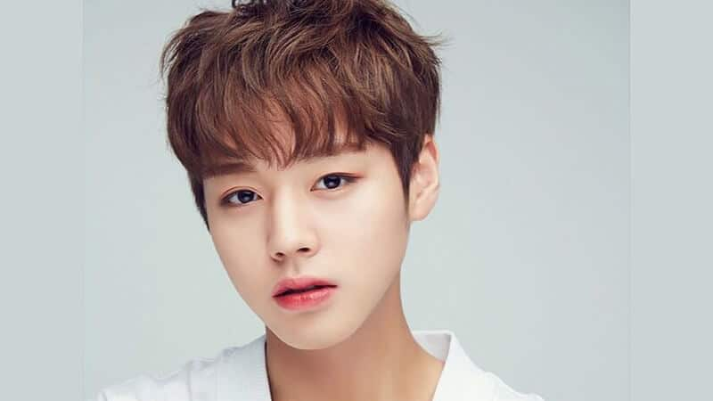 Profil Member Wanna One - Jihoon