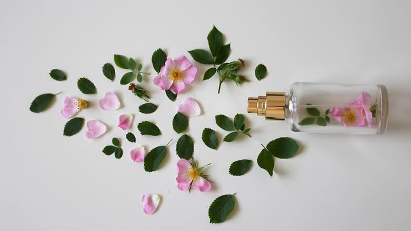 Shampo Anti Ketombe Paling Ampuh - Botol Berisi Bunga