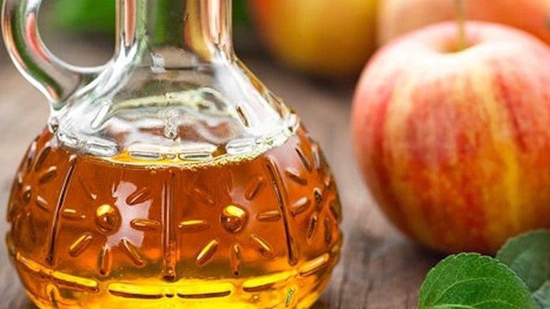 Cara Mengatasi Ketombe dan Gatal - Sari Cuka Apel