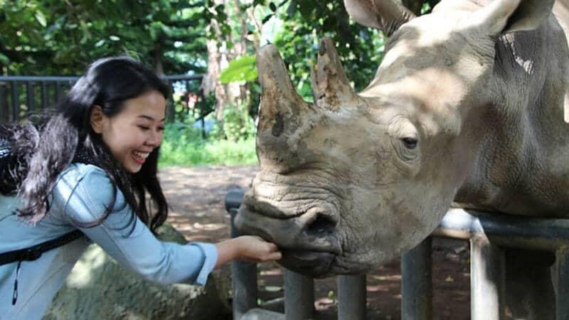 Jatim Park 2 Malang - Menyentuh badak