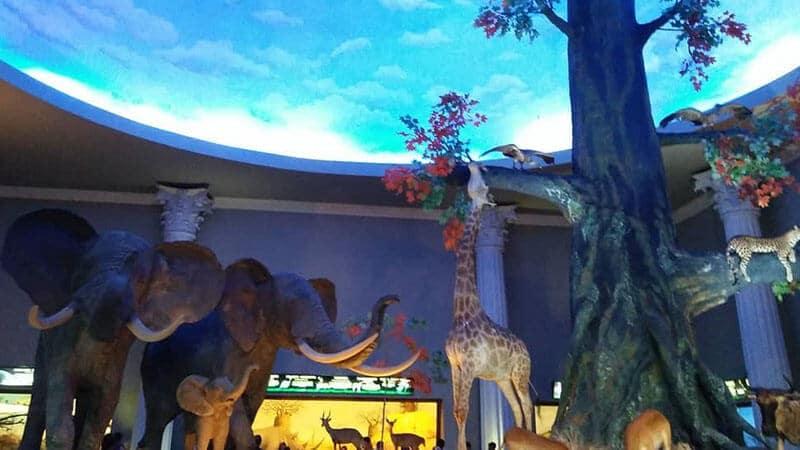 Jatim Park 2 Malang - Diorama