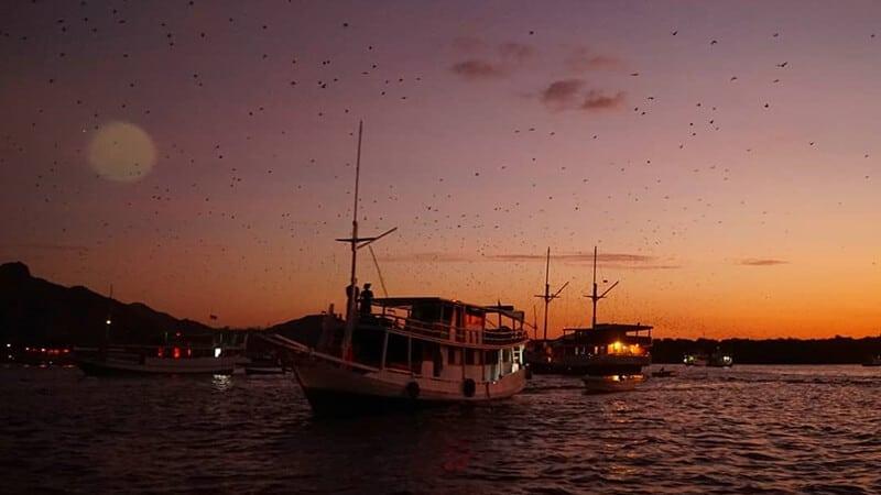 Tempat Wisata di Labuan Bajo - Pulau Kalong