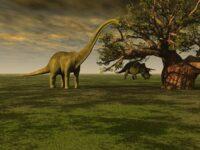 Macam Macam Dinosaurus dan Namanya - Dinosaurus Herbivora