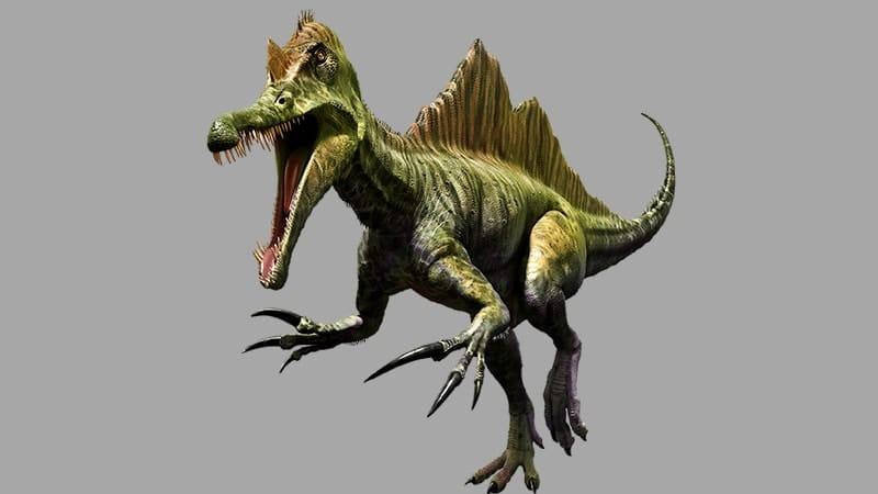 Macam Macam Dinosaurus dan Namanya - Spinosaurus