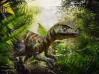 Dinosaurus Terbesar di Dunia - Raptor