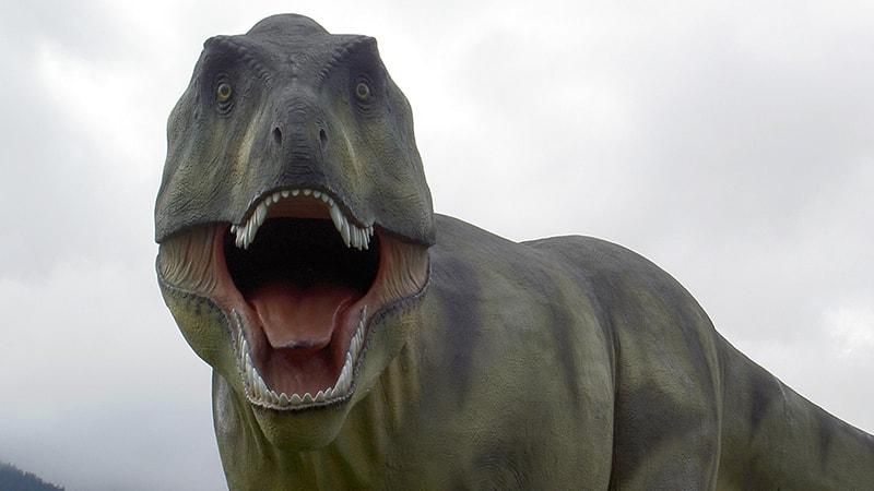 Dinosaurus Terbesar di Dunia - Tyranosaurus Rex