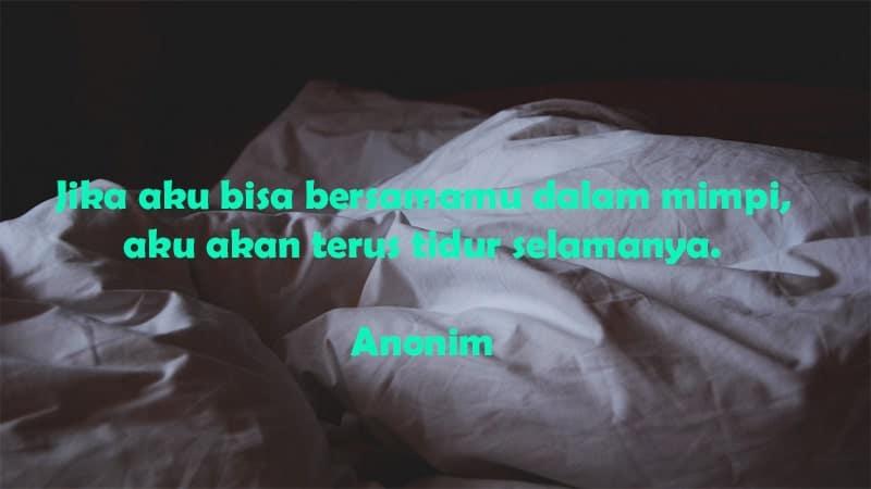 Ucapan Selamat Tidur Romantis - Anonim Tidur Selamanya