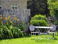 Tanaman untuk Taman Rumah Minimalis - Pekarangan