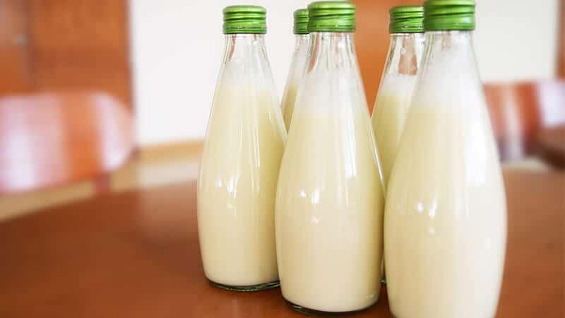Manfaat Minum Susu - Pengertian Susu