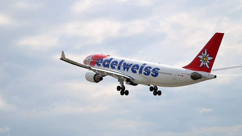 Bunga Edelweis - Pesawat Swiss