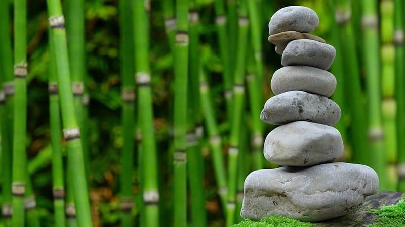 Cara Membuat Taman Rumah Sederhana - Batu Alam