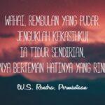 Kata-Kata Puitis tentang Cinta - W.S. Rendra