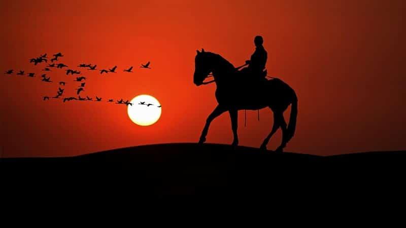 Kisah Nabi Sulaiman AS - Siluet Manusia, Kuda, dan Burung Hud-Hud
