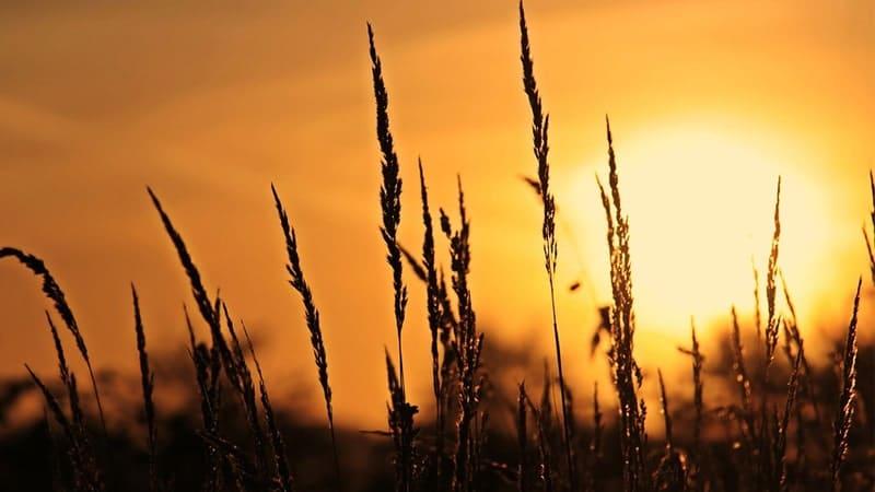 Kisah Nabi Nuh AS - Matahari Terbit