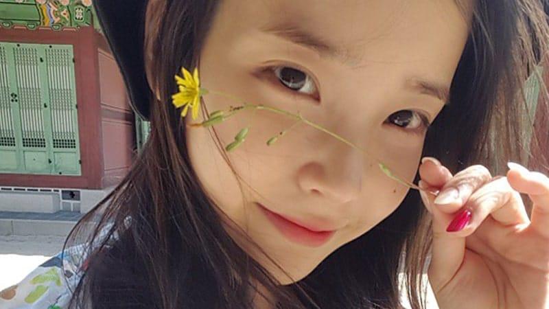 Biodata dan Profil IU - Lee Ji Eun