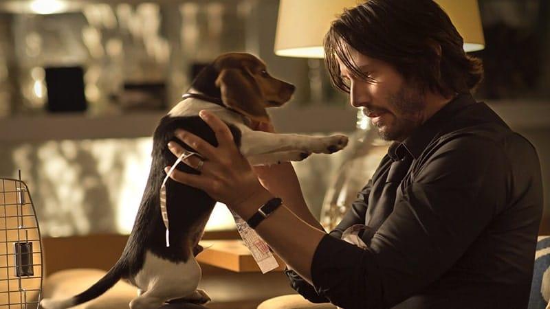 Film John WIck 1 - John WIck dan Anjingnya