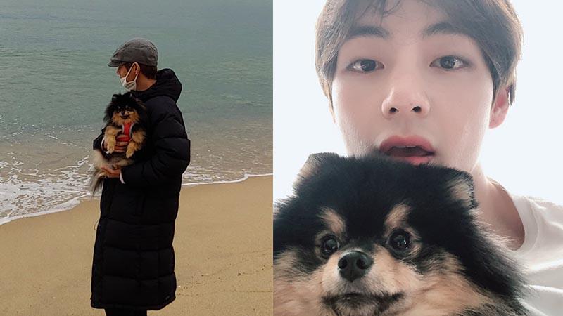 Taehyung dan Yeontan