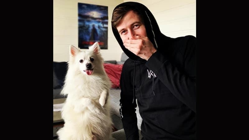 Potret Alan Walker - DJ Alan bareng Anjing Piaraan