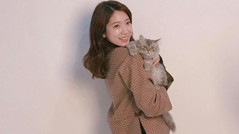 Foto-Foto Park Shin Hye - Sama Kucing Kesayangan