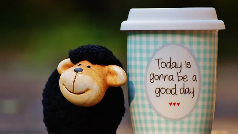 Kata-Kata Bijak Bahasa Inggris - Boneka dan Mug