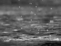Kata-Kata tentang Hujan Rindu dan Kenangan - Rintik Hujan